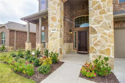 Frisco Single Family Home For Sale: 4520 Lakeview Drive