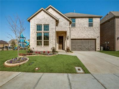 Irving Single Family Home For Sale: 3445 Poinsettia Way