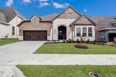 Allen Single Family Home For Sale: 1005 Asbury Drive