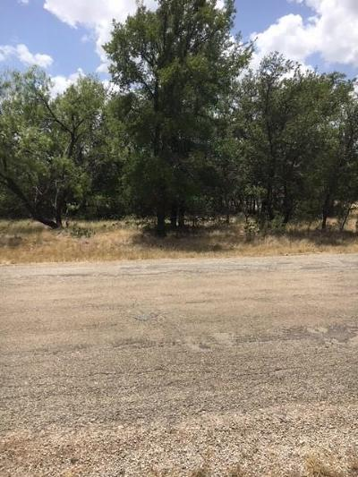 Brownwood Residential Lots & Land For Sale: Cr 589 County Road 589