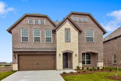 Frisco Single Family Home For Sale: 13274 Decidedly Drive