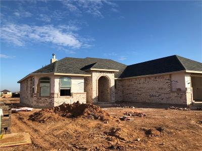 Abilene Single Family Home For Sale: 250 Carriage Hills Parkway