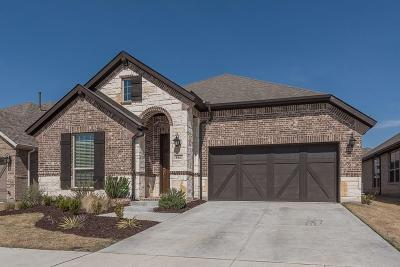 Little Elm Single Family Home For Sale: 861 Countryside Way