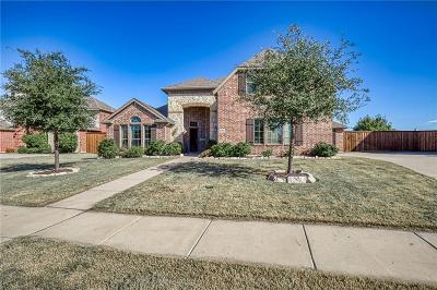 Prosper Single Family Home For Sale: 281 Wilson Drive