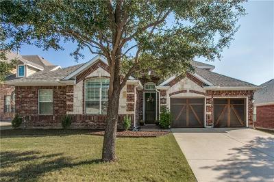 Denton Single Family Home For Sale: 3801 Miramar Drive