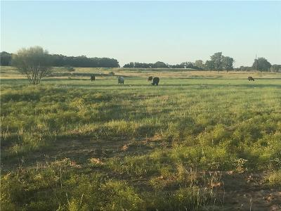 Lipan Farm & Ranch For Sale: 841 Addison Road