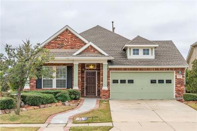 Little Elm Single Family Home For Sale: 3300 Canyon Lake Drive