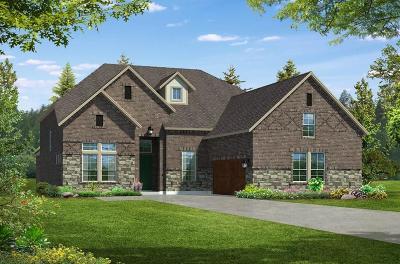 Allen Single Family Home Active Contingent: 607 Conifer Lane