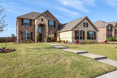 Rowlett Single Family Home For Sale: 8009 Horseshoe Bend