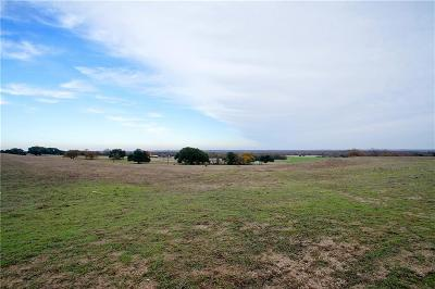 Poolville Farm & Ranch For Sale: Fm 920