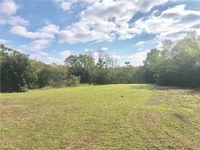 Dallas County Residential Lots & Land For Sale: 1302 E 10th Street