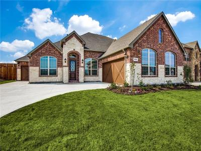 Frisco Single Family Home For Sale: 9759 Hickory Hill Road
