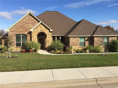 Parker County Single Family Home For Sale: 3217 Lakeway Drive