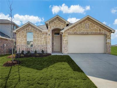 Fort Worth TX Single Family Home For Sale: $246,749