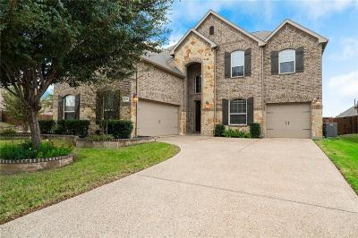 Frisco Single Family Home For Sale: 9583 Robinwoods Drive