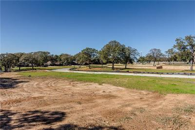 Parker County, Tarrant County, Wise County Residential Lots & Land For Sale: 7224 Smith Farm Drive