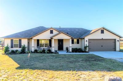 Parker County Single Family Home For Sale: 160 Blue Sky Lane