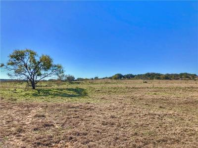Erath County Farm & Ranch For Sale: 5145 County Road 156