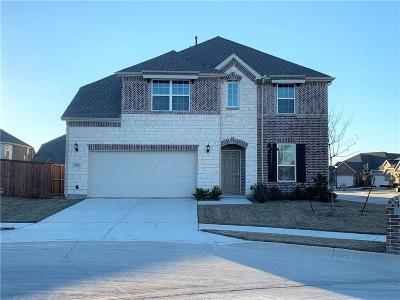 Little Elm Single Family Home For Sale: 400 Stern Court