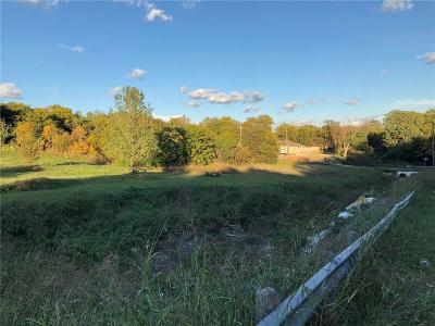 Tarrant County Residential Lots & Land For Sale: 3012 Roosevelt Avenue