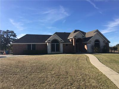 Poolville Single Family Home For Sale: 18305 Fm 920