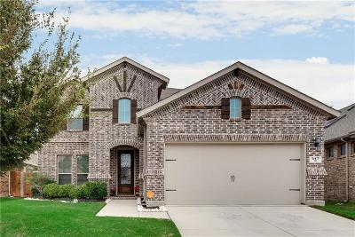 Little Elm Single Family Home For Sale: 917 Green Coral Drive