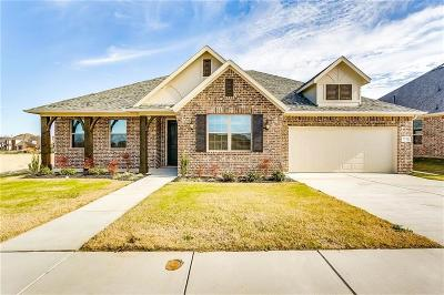 Fort Worth Single Family Home For Sale: 7232 Harrier Street