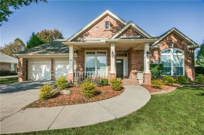 Flower Mound Single Family Home For Sale: 3904 Belstrum Drive