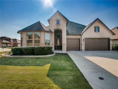 Denton Single Family Home Active Contingent: 9201 Ambrosia Court