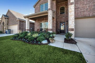 Frisco TX Single Family Home For Sale: $345,000