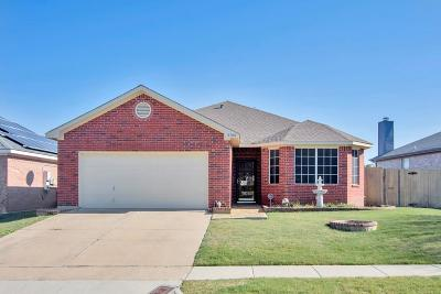 Fort Worth Single Family Home For Sale: 8700 Rainy Lake Drive