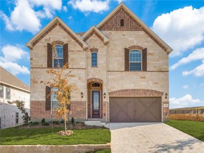 Lewisville Single Family Home For Sale: 1713 Brookhollow Drive