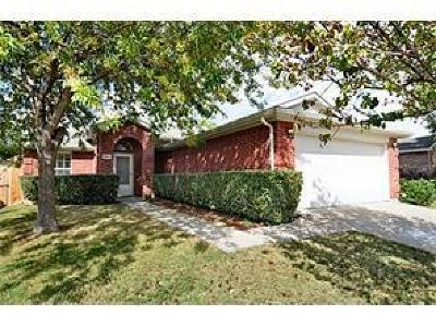 Little Elm Single Family Home For Sale: 1041 Port Mansfield Drive
