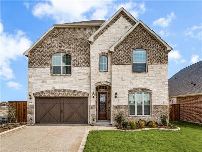 Denton County Single Family Home For Sale: 6000 Culverdale Lane