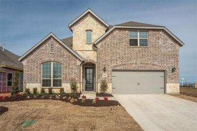 Prosper Single Family Home For Sale: 3960 Sweet Clover Drive