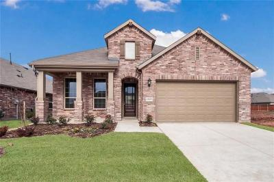 Denton County Single Family Home For Sale: 1509 Spoonbill Drive