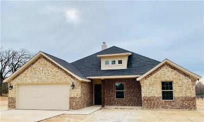 Parker County Single Family Home For Sale: 9209 Old Springtown Road