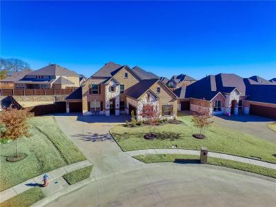 Rowlett Single Family Home For Sale: 9611 Mechem Court