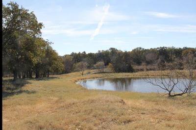 Poolville Farm & Ranch For Sale: Tbd Erwin