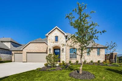 McKinney Single Family Home For Sale: 3000 Orleans Drive