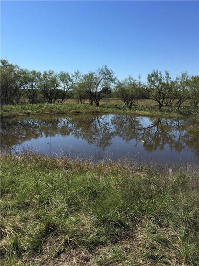 Breckenridge Farm & Ranch For Sale: 0000 Fm 717