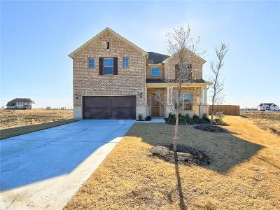 Prosper Single Family Home For Sale: 2491 Celestial Drive