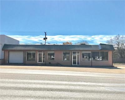 Breckenridge Commercial For Sale: 613 W Walker Street