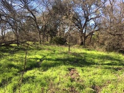 Erath County Farm & Ranch For Sale: Tbd Cr 216
