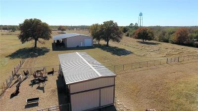 Mineral Wells Farm & Ranch For Sale: 705 NE 23rd Street #A
