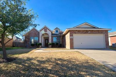Little Elm Single Family Home For Sale: 3416 Roxie Drive