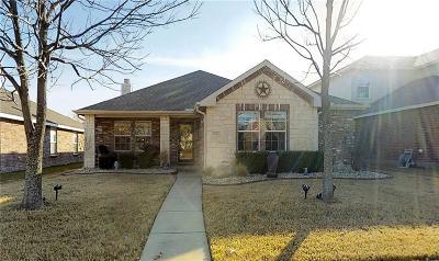 Allen Single Family Home For Sale: 1316 Lamar Lane