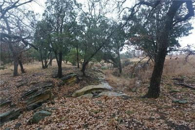 Possum Kingdom Lake Residential Lots & Land For Sale: Lot 38 Praire Falcon