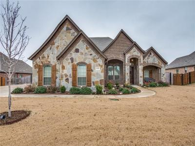 Tarrant County Single Family Home For Sale: 1233 Bluff Springs Drive