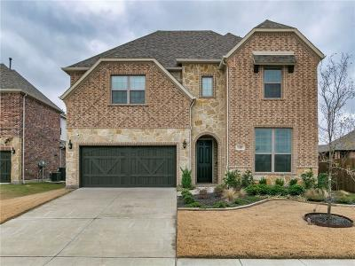 Little Elm Single Family Home For Sale: 1433 Torrent Drive